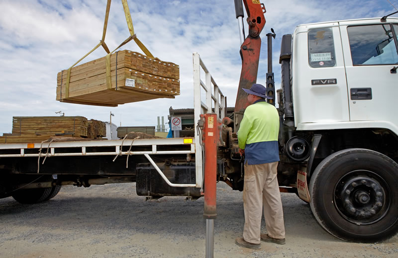 Loading Timber Plants On Truck
