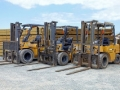 Forklifts parked in a timber yard with stacks of wood logs