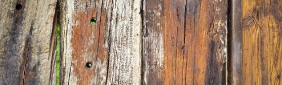 How to Prevent Rot in Your Wooden Fence